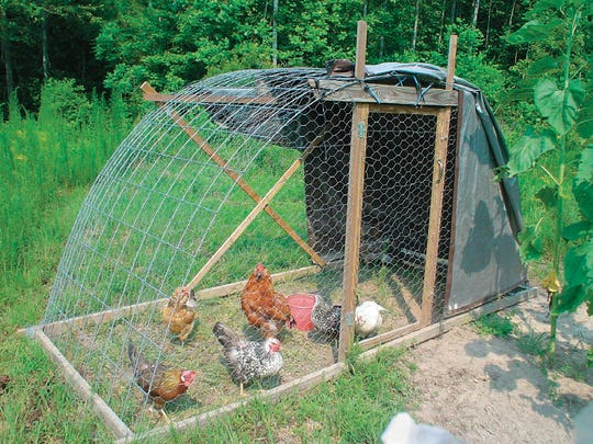 "Chickens can thrive in even small coops. This is from  ""How to Raise Chickens."""