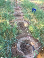 Use a string secured with bungee cords between line posts, with plastic flagging tape tied at four-footintervals to mark where holes should be dug.