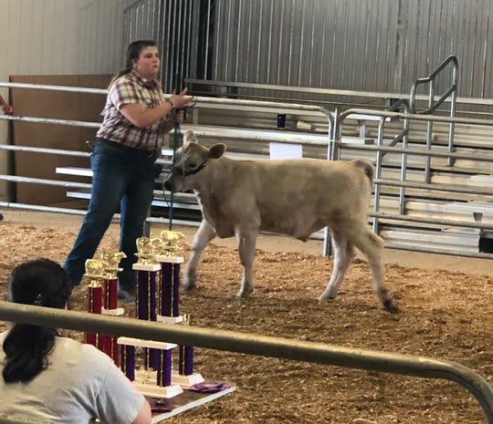 The Ohio Fair Managers Association announced on April 8 that no 2020 county fairs have been canceled yet. The Marion County Fair Board said the local fair is still scheduled to run from June 29 to July 4.