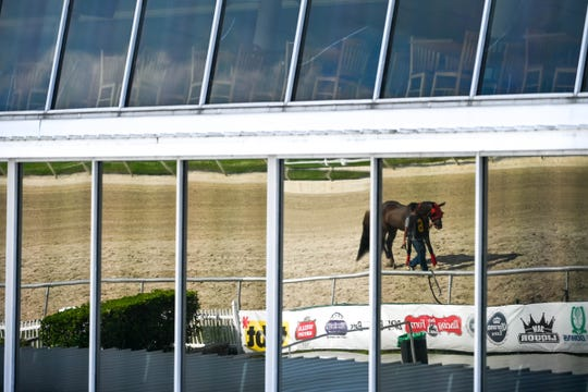General view of a reflection of a horse being walked as the Tampa Bay Downs is closed to the public at Tampa Bay Downs on March 18, 2020.