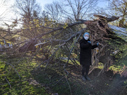 Robin Lawrence stands next to a fallen tree in her Newburgh backyard Sunday, March 29, 2020. An EF-2 tornado hit Newburgh the night before, which caused roof damage to her home.