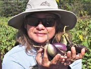 Kathrina Reyes with some of the eggplant that she's picked to fill an order from Guahan Sustainable Culture on Wednesday, April 15 at Reyes' farm in Dededo.