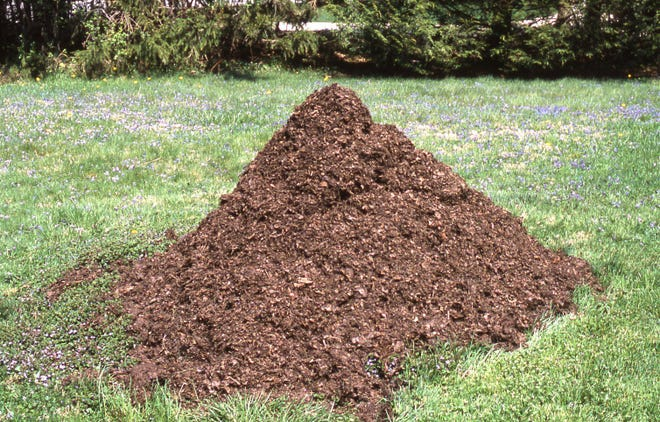This one cubic yard of leaf compost is two years old. it is ideal for use as a soil additive or as a garden mulch.