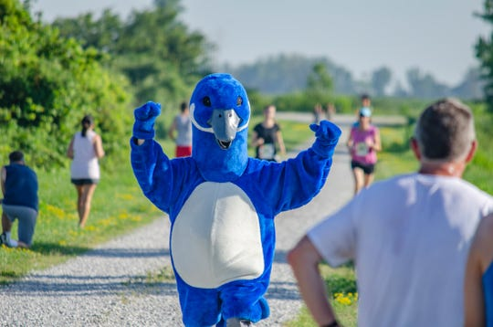 """""""Puddles the Blue Goose"""" runs in a Discover Ottawa 5K at Ottawa National Wildlife Refuge. Puddles has been connecting with refuge fans through emails and on the Friends of Ottawa National Wildlife Refuge Facebook page during the pandemic."""