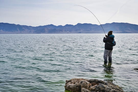 Autumn Harry's early morning trips to Pyramid Lake are just one example of how people in Nevada's 27 native communities are helping each other cope with the pandemic.