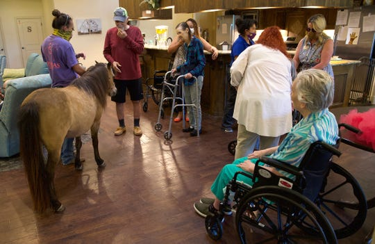 Residents and staff at New Haven Assisted Living and Memory Care of San Angelo get a visit from Buttercup the pony, at far left, on Monday, April 20, 2020. Restrictions in place due to the coronavirus have severely limited visits to residents so staff at the facility brought the horse in as a way to entertain them.