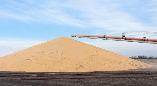 With few cars being driven, less ethanol (made from corn) is being used in the fuel. Farmer corn prices may suffer.