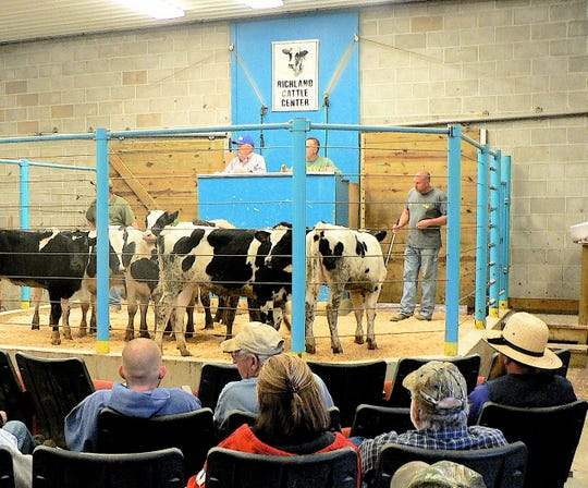 There were still sellers and buyers at the dairy sale last week.  What about upcoming weeks?