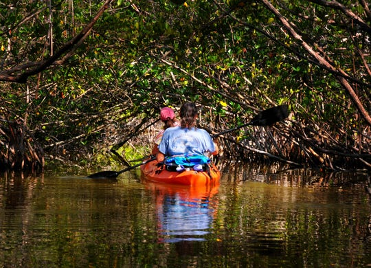 Kayakers  paddle  through a tunnel of mangroves in the Thousand Islands in the Banana River at Cocoa Beach, part of the Indian River Lagoon.  Earth Day's 50th anniversary is Wednesday.