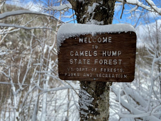 A trailside sign in Camel's Hump State Forest near the Appalachian Gap on April 11, 2020. The Long Trail and all side trails were closed due to the coronavirus pandemic.