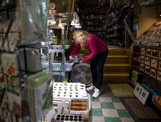 Lou Ann Weisenstein waters the seedlings they sell to customers at Slaters Hardware. The hardware store has put up glass at the register as well as a sign at the door instructing customers to wait for assistance to cut down on traffic in the store.