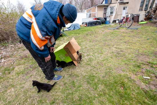 Frank Barkley plays with kittens Tuesday, April 21, 2020, on his Port Huron Township property. Mookey Honey, the mother of the four kittens, spent three days stuck up a tree.