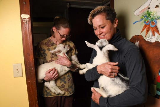 Jessica Bell, left, and Sandra Coffman, owners of Split Creek Farm in Anderson hold day-old kids in a room with baby cribs Wednesday.
