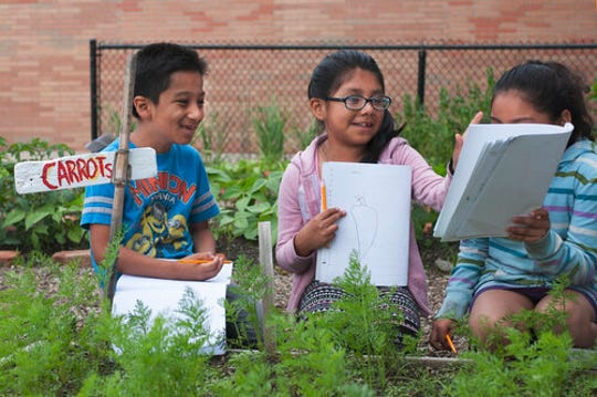 Land to Learn is focused on educating local elementary school students about gardening.