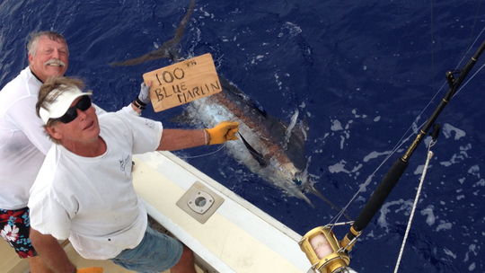 Doug Blanchard's 100th blue marlin catch.