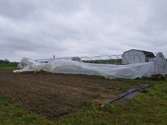 Joshua Nash's hoop house after the storm. A hoop house is a type of greenhouse.