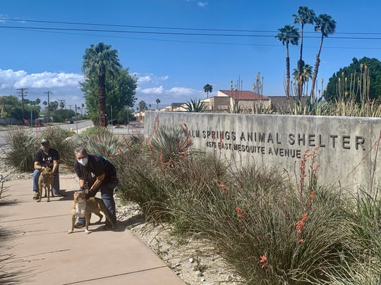 Palm Springs Animal Shelter volunteers Will Breto and Chris Ingebretsen walk Lizzy and Viking.