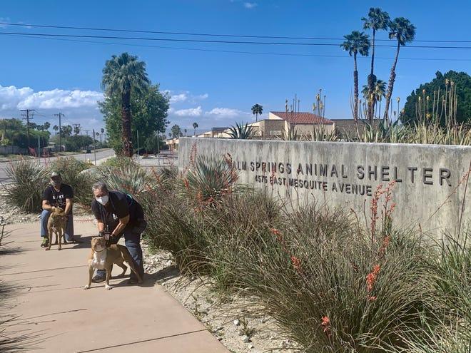 Palm Springs Animal Shelter volunteers Will Breto and Chris Ingebretsen walk Lizzy and Viking.