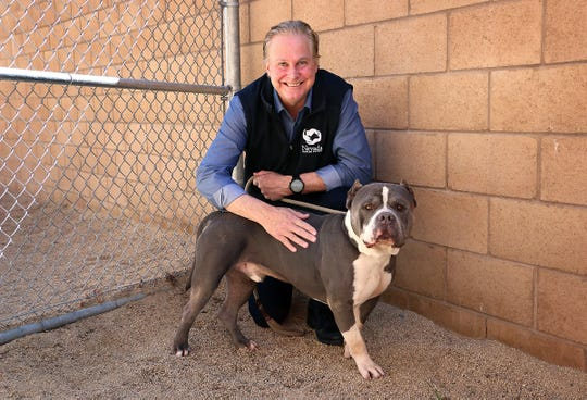CEO Greg Hall poses for a portrait with Ghost at the Nevada Humane Society in Reno on April 23, 2020. Ghost is one of the few dogs still at the shelter and available for adoption.