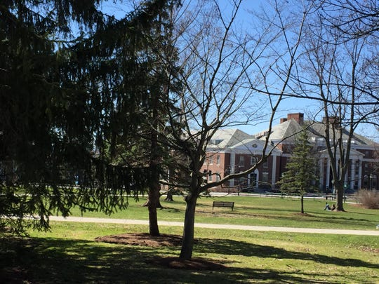 A reader relaxes under a tree on an otherwise unpopulated University of Vermont green just after 3 p.m. April 23, 2020.