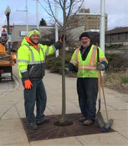The City of Manitowoc's Arbor Day 2020 tree has been planted on the corner of North Sixth Street and Maritime Drive in downtown Manitowoc.