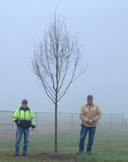 Evan Hellinger, left, and Brett Felger, employees of the Ontario Parks Department, planted two Frontier Elm trees on Arbor Day at Marshal Park Friday.