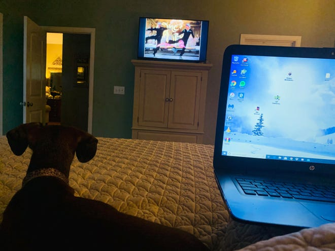 Kristy Meanor and her dog Rudy have been watching the American Film Institute's top 100 films.