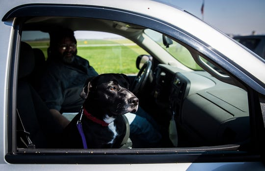 """After spending a few days with black lab, Murray, Jeff French, 55, knew the dog was the """"perfect companion"""" for him and his grandkids. French used the Muncie Animal Care and Services new limited contact adoption method to connect with Murray and the adoption was finalized in the facility's parking lot Friday, April 24, 2020."""
