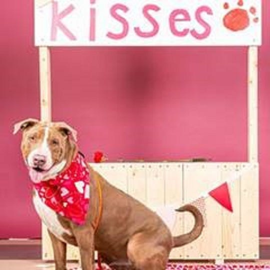 A photo of Treble posing by a kissing booth.