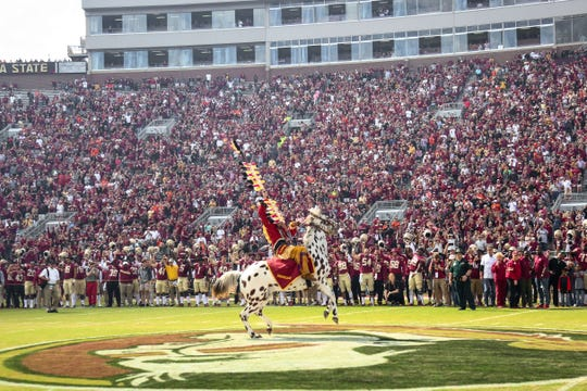 FSU provides a multitude of opportunities for students to succeed in the world of sports.