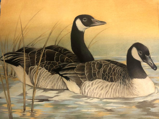 "Mountain Home Junior High 8th grader Josie Arp recently won Best in Show for her ""Geese at Dawn"" entry at the Junior Duck Stamp Art Contest. Arp won a $1,000 scholarship and will now represent Arkansas in the National Junior Duck Stamp Competition. Her art teacher is Allison Wiseman."