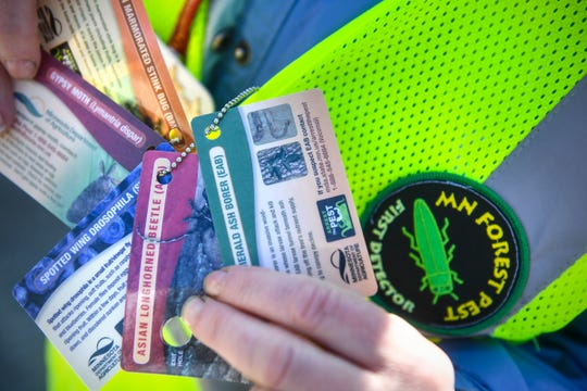 Cards are used to identify invasive species by volunteers.
