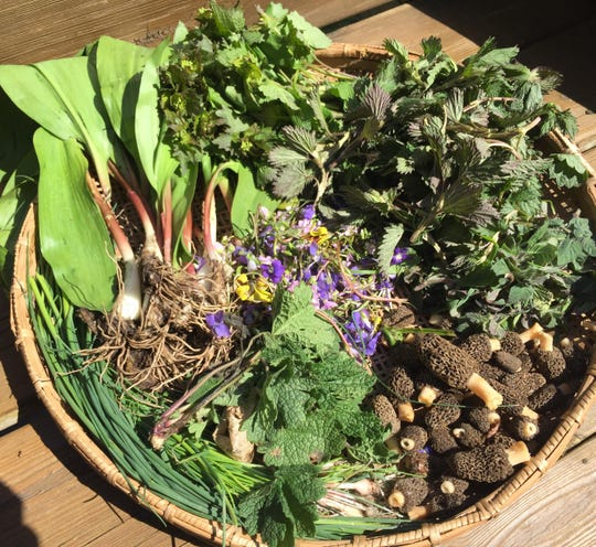"Val Rossman of Union City shared her foraging bounty on her Facebook page on April 26, 2020, writing, ""Lovely afternoon shopping where there are no people or viruses and the organics are free."""