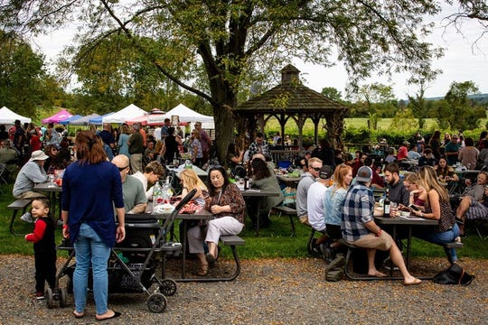 Past Vine to Wine Spring Festivals hosted by Old York Cellars.