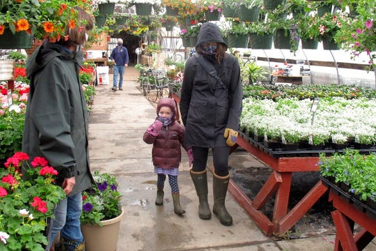 In this Monday April 27, 2020, photo, Kim and 4-year-old Marley Farwell, of Stowe, Vt., walk through the greenhouse at Evergreen Gardens of Vermont in Waterbury Center, Vt. Monday was the the first day businesses such as greenhouses and garden centers could allow a small number of customers inside as part of Vermont's gradual coronavirus pandemic reopening plan.
