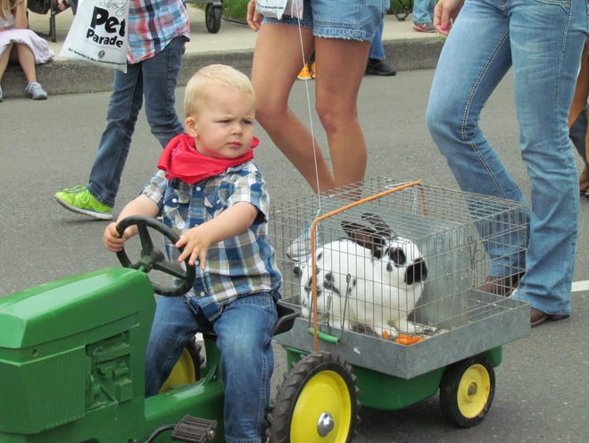 Silverton's annual Pet Parade is adjusting to COVID-19 restrictions with a virtual parade on Facebook.