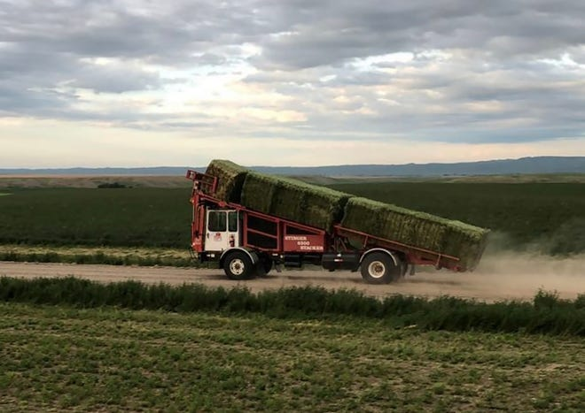 Extending the baling window matters to the Dorn family who operates a hay business on their Hardin, Montana farm.