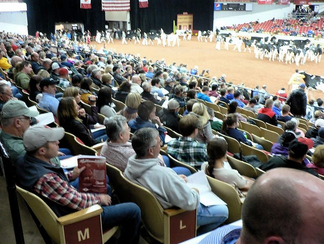 Stands in the Alliant Energy Center's coliseum will remain empty this year due to World Dairy Expo being canceled. However, many online events will help dairy producers stay connected and informed.