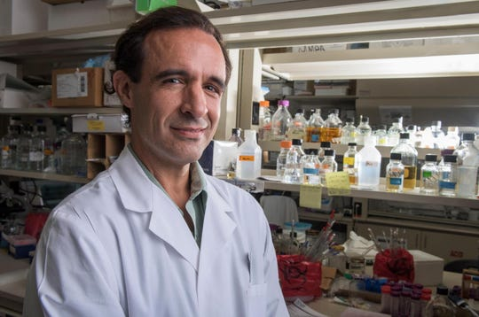 Jeffrey Cirillo is leading a trial into the effectiveness of a tuberculosis vaccine in lessening the severity of the coronavirus. [CONTRIBUTED/Texas A&M University Health Science Center]