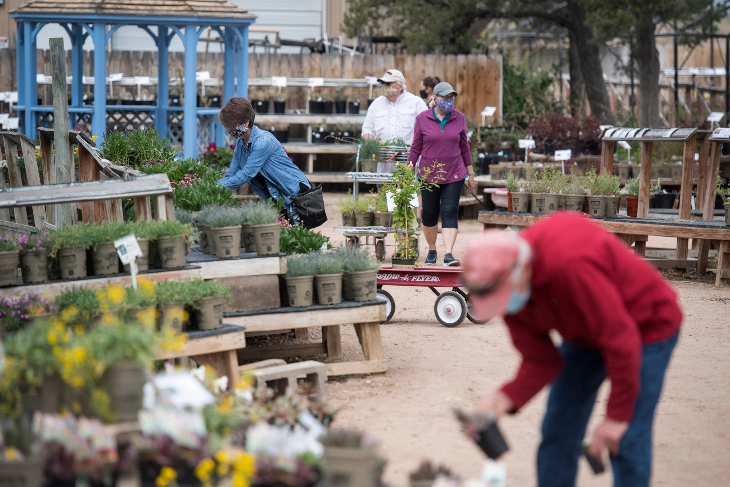 Fort Collins Nursery As Victory Gardens