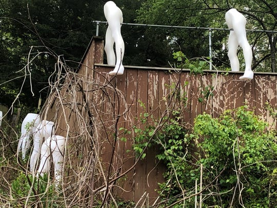 "Called ""A dose of quarantine reality,"" this art installation by Sheila Thibodeaux has been grabbing a lot of attention in East Asheville lately."