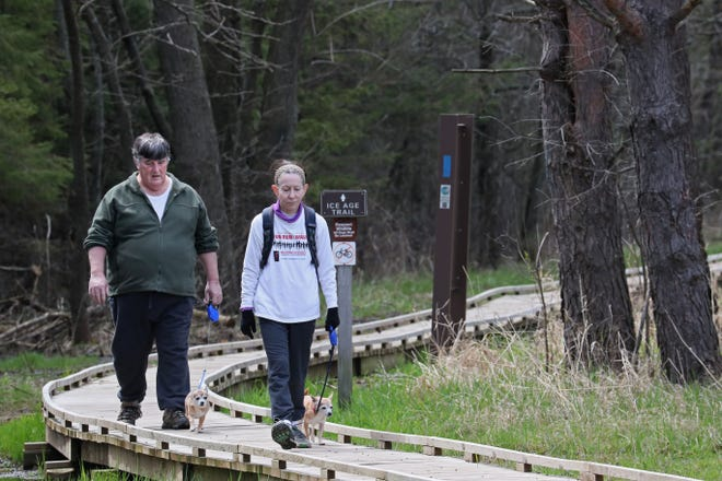 Bob Pecher walks his dog Indigo while his wife, Lauren Pecher, walks their dog Iris.  The couple are from Shorewood and were walking on part of the Ice Age Trail at Lapham Peak in the Southern Kettle Moraine State Forest near Delafield.