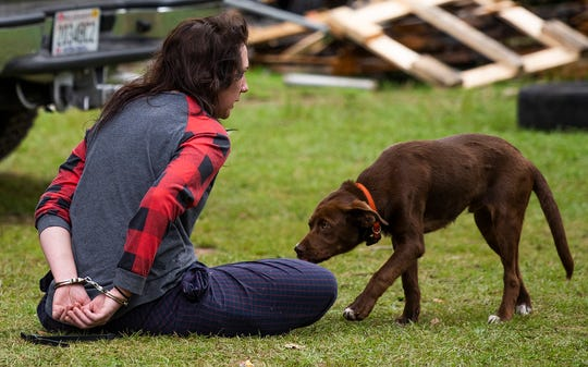 A handcuffed woman is sniffed by a dog as a multi department law enforcement raid is held on a farmhouse in Prattville, Ala., on Thursday morning April 30, 2020.
