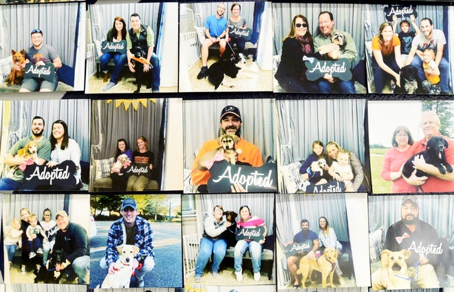 Photos of recent adoptions at the Humane Society of Northwest Louisiana are displayed on the walls.