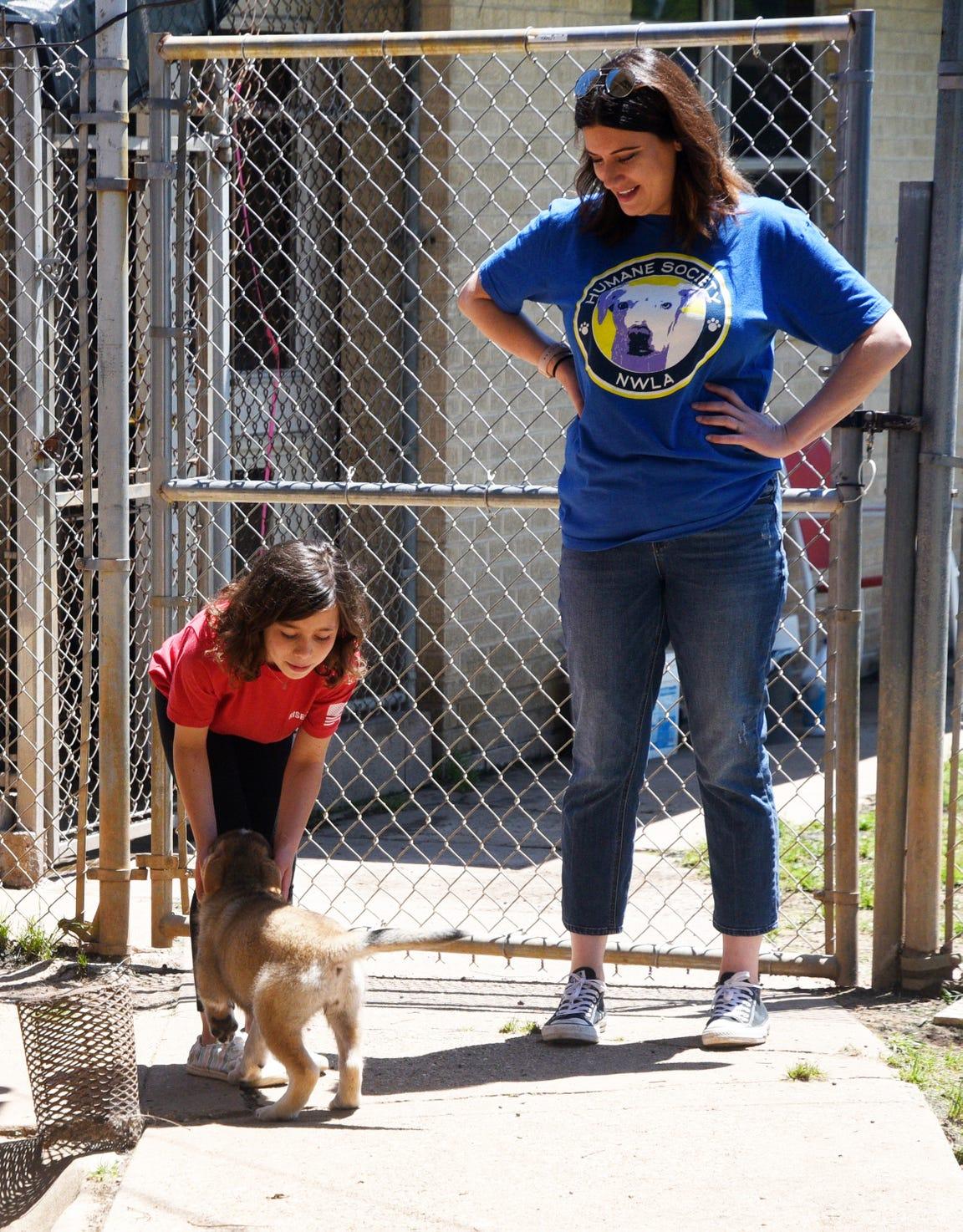 Volunteer Sarrah Walton, right, and Emma Jo Roppolo look at the puppies for adoption at the Humane Society of Northwest Louisiana.