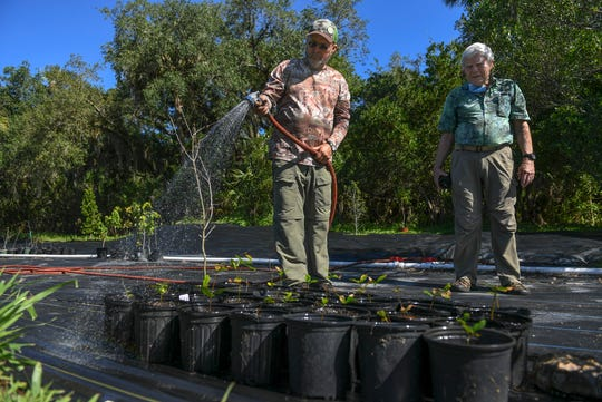 "Ricky Ray (left) of Vero Beach, and Richard Barker, President of the Pelican Island Audubon Society, take care of young oak tree seedlings on Friday, March 1, 2020, at the Audubon Society's campus on Oslo Road. ""I started in the Tropical Audubon Society in high school, and just went from there,"" Ray said. ""Always loved the everglades, birds, and outdoors, and nature, you'll always see me around that."""