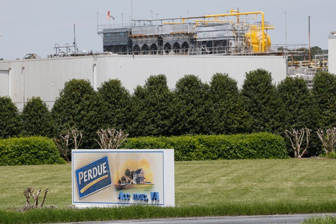 Local hospital officials have reported a spike in COVID-19 cases at the Perdue poultry processing plant on the Eastern Shore Wednesday April 29, 2020, in Accomac, Va. Coronavirus cases among workers at poultry plants on Virginia's Eastern Shore have become an increasing concern for local health officials.