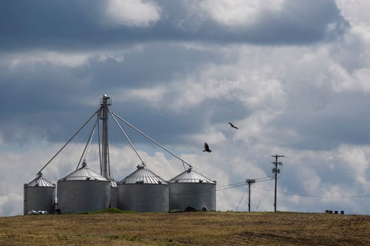 Birds fly by farm silos located near Sebree Springs Park in Sebree, Ky., which is currently closed to the public due to restrictions put in place by Gov. Andy Beshear to stop the spread of COVID-19. The town of Sebree is a located a few miles south of a Tyson Foods poultry plant, which has had more than 70 workers test positive for the respiratory virus.