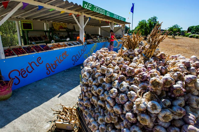Fresh garlic is sold at a roadside produce market in Provence region of France.