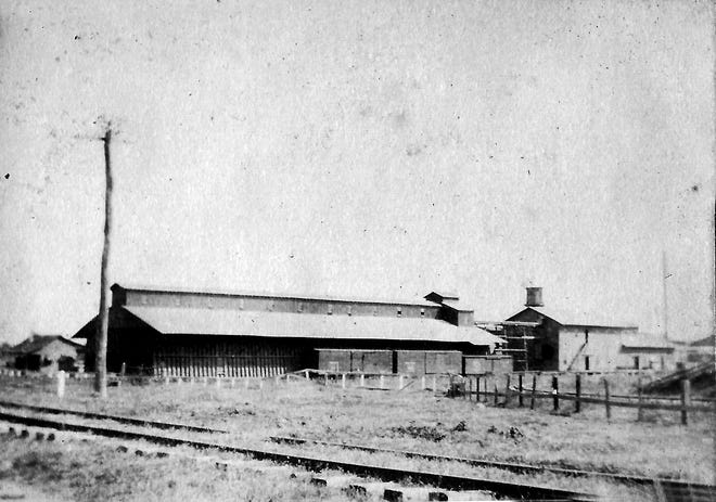 Another view of the old oil mill in Washington, LA from the album of Ophelia Pitre Lafleur. Photo taken in the early 1900s.